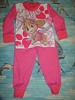 """Пижама для девочки """"Песик""""  2, 3, год"""