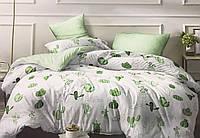 Двуспальный комплект постельного белья евро 200*220 хлопок  (13135) TM KRISPOL Украина