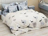 Двуспальный комплект постельного белья евро 200*220 хлопок  (13152) TM KRISPOL Украина