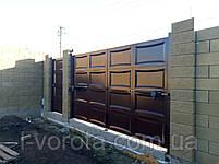 Автоматические распашные ворота ш4000, в2000 и калитка ш1000, в2000 (дизайн филенка, шоколадка линза), фото 2