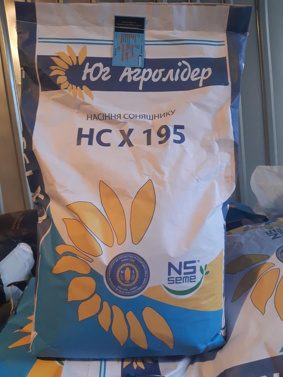 Насіння соняшника НС Х 195 (екстра)