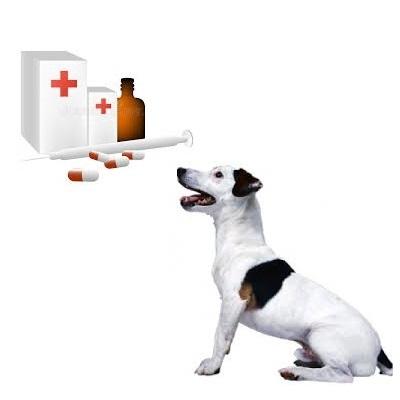 Ветеринарні препарати