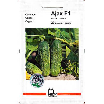"Семена огурца ультрараннего, пригодного для засолки ""Аякс"" F1 (20 семян) от Nunhems, Голландия, фото 2"