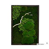 """Картина из стабилизированного мха и растений """"Forest colors"""" 4, P28"""