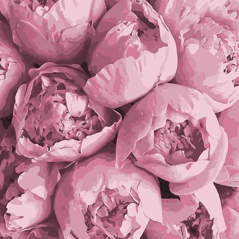 Картина за номерами Весняні емоції 40*40см КНО3033 Ідейка, фото 2
