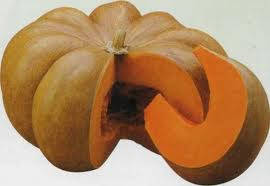 Семена тыквы Мускат де прованс 0,5 кг