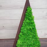 Ялинка трикутна з мохом, трикутник з мохом для новорічного декору 55 см, фото 3