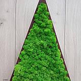 Ялинка трикутна з мохом, трикутник з мохом для новорічного декору 55 см, фото 2