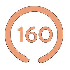 ШДМ 160