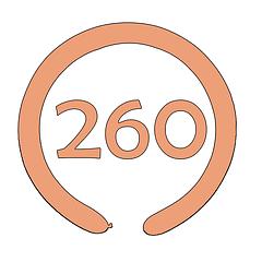 ШДМ 260