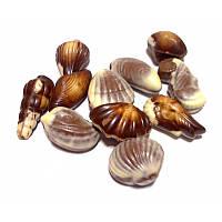 J.D.Gross Шоколадные ракушки с пралине начинкой, фото 2