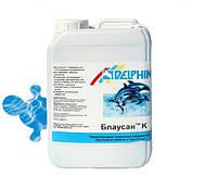 Непенящийся жидкий альгицид Delphin Блаусан К 3 литра.Средство для удаления  водорослей и грибков в бассейне, фото 1