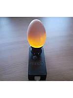 """Овоскоп для проверки яиц """"Сяйво""""ОВ-1 светодиодный"""