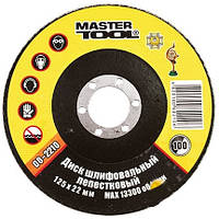 Master-tool Круг 08-2212 шлиф.лепестковый 115х22 зерно 120
