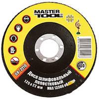 Master-tool Круг 08-2210 шлиф.лепестковый 125х22 зерно 100