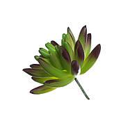 Цветок искусственный Суккулент Седум 8см 109705