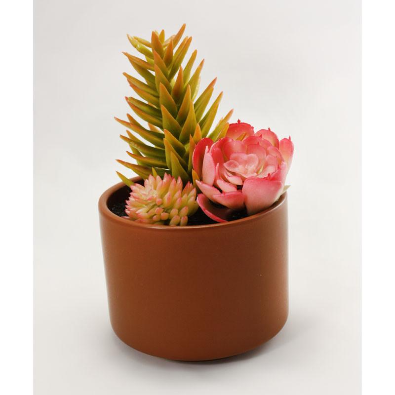 Искуственное растение, суккулент, салатово-розовое растение