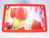Стол кухонный стеклянный Рамка фотопечать. Цвет и размер можно изменять. Есть фотопечать и матировка., фото 2