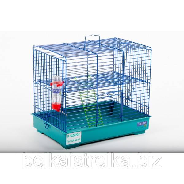 """Клетка Природа """"Микки"""" с лесенкой, крашенная, 37х28х30 см"""