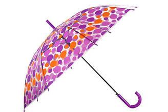 Зонт-трость прозрачный, полуавтомат, 8 спиц, фиолетовый/оранжевый