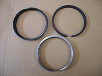 Кольца поршневые стандартные 480EF-1004030