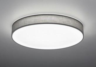 Светодиодный светильник Trio 621915511