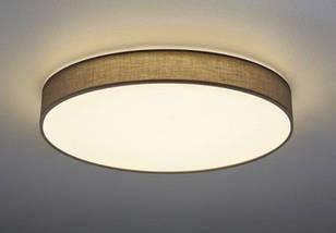 Светодиодный светильник Trio 621915511, фото 3