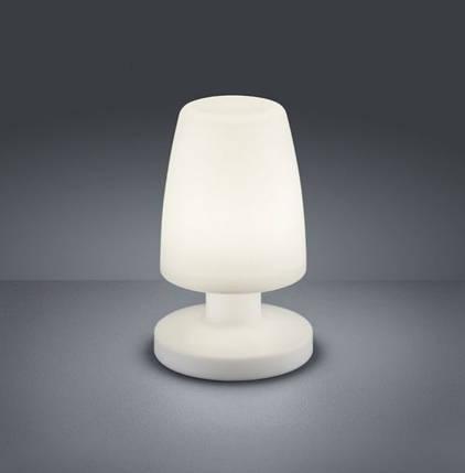 Настольная лампа Trio R57051101, фото 2