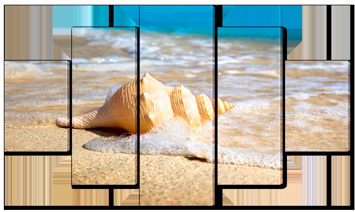 Модульная картина Interno Эко кожа Ракушка на пляже 123х69см (A6713M)
