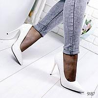 Женские туфли белые питон Stella 9187