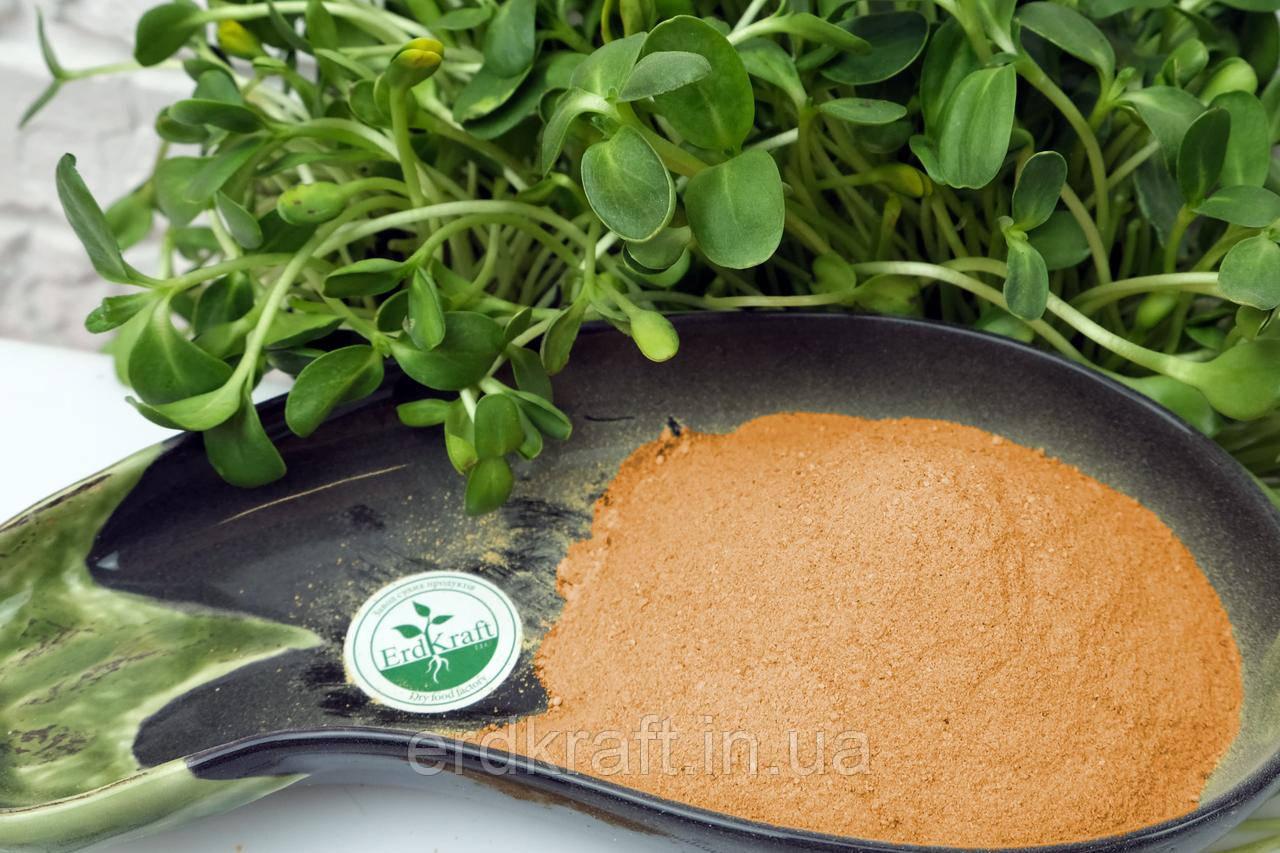 Морковь сушеная, молотая, вес 2 кг.