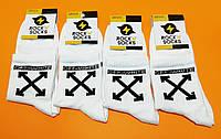 Носки с приколами демисезонные Rock'n'socks 444-06 Украина one size  (37-44р) НМД-0510444