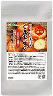 Кверцетин - потужний природний антиоксидант, антистаріння організму. Японія на 30 днів застосування., фото 1
