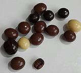 Шоколадное драже орех, кофе,апельсин,изюм , нут  Hazine, 230 гр., фото 5