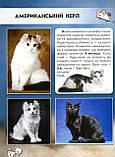 Кішки. Світ навколо нас. Протасовицька Тамара, фото 5