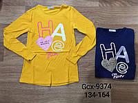 Реглан для дівчаток оптом 65% бавовни, розміри 134-164 Glo-story, арт. GCX-9374, фото 1