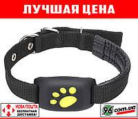 Лучший GPS tracker для собак кошек животных (навигатор, локатор, трекер, ошейник, маяк, маячек)
