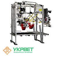 Станок для обработки копыт KVK 650-SР2 (гидравлическое и електрическое управление)