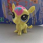 Littlest pet shop lps игрушка Hasbro лпс пет шоп верблюд, фото 2