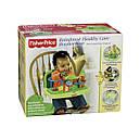 Детский стульчик бустер для кормления Джунгли, Тропический лес Fisher Price Rainforest Booster, фото 10