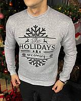 Мужской зимний свитшот с флисом рисунок Holidays серый