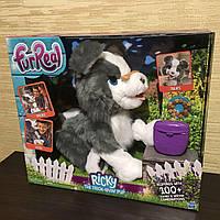Интерактивнаяигрушка Hasbroщенок Рикки  FurReal Friends Ricky Trick-Lovin Interactive Plush Pet E0384 уценка