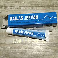 Кайлаш Дживан мазь-бальзам, Kailas Jeevan, 20 грамм - фурункулы, ожоги, раны, укусы насекомых, обморожения