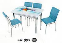 Комплект стіл розкладний + 4 стільці № 1000 купити в Одесі, Україні