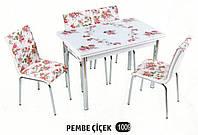 Комплект стіл розкладний + 4 стільці № 1009 купити в Одесі, Україні