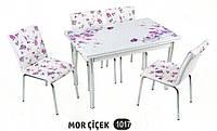 Комплект стіл розкладний + 4 стільці № 1017 купити в Одесі, Україні