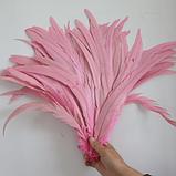 Перо петуха Натуральное Цвет Розовый 28-35см, фото 2