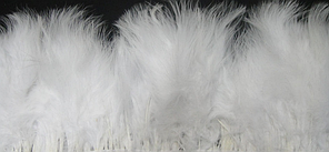 Перьевая тесьма из перьев лебедя. Цвет на выбор есть на сайте.