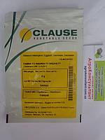 Семена баклажана Фабина F1 (Clause/ АГРОПАК+) 5 г  — ранний (70-75 дн), фиолетовый,удлиненно-цилиндрический