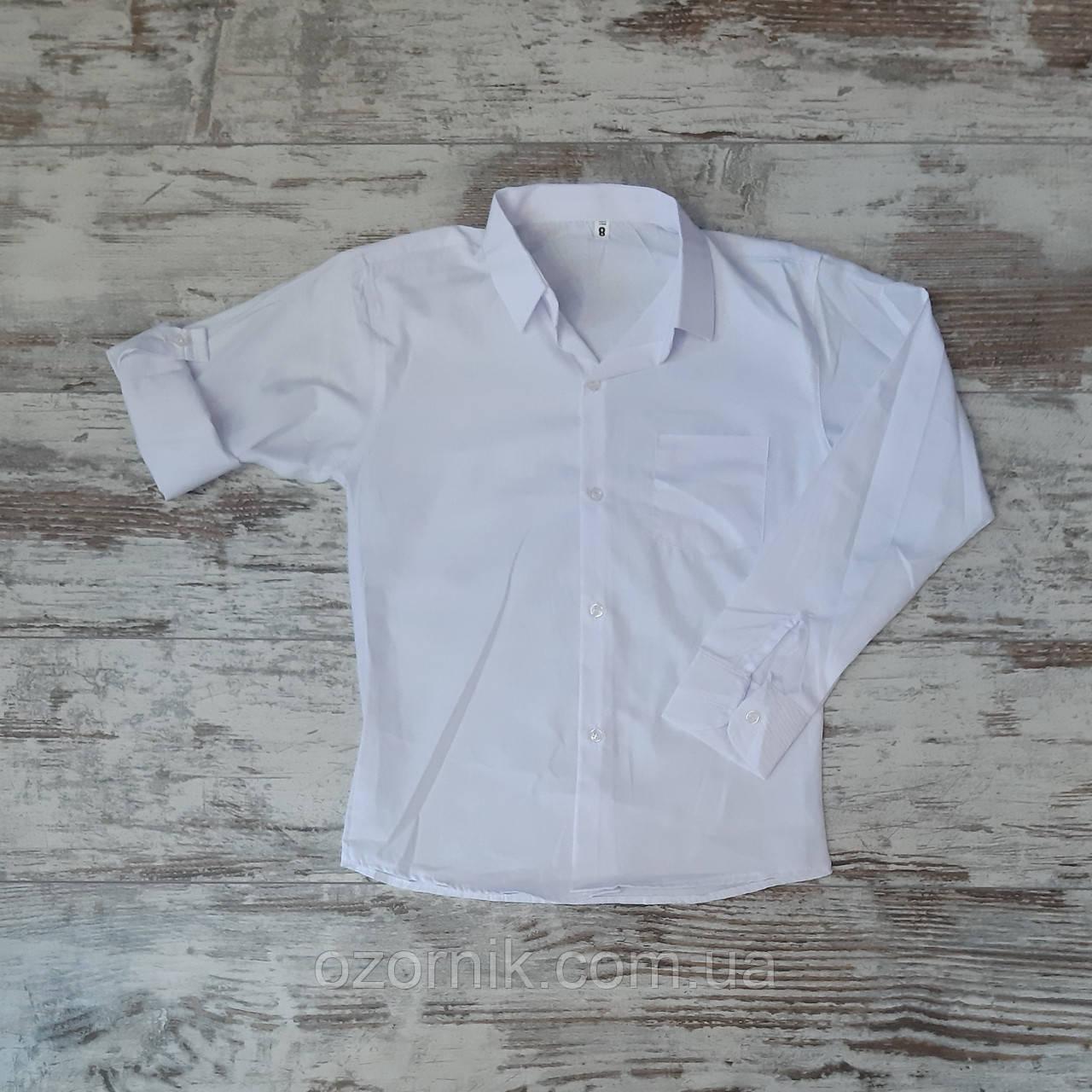 Оптом Детская Белая Рубашка 2-5 лет Турция